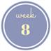 8 weken zwanger