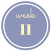 11 weken zwanger