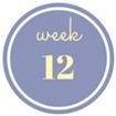 12 weken zwanger