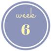 6 weken zwanger